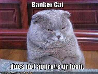 funny-pictures-banker-cat.jpg